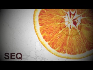 FRUCHT PROMO VIDEO 002 (SeQ - Orange EP)